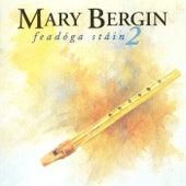 Feadóga Stáin 2 by Mary Bergin