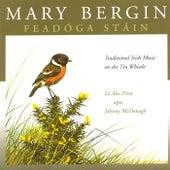 Feadóga Stáin by Mary Bergin