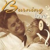 Burning Love 3 von Various Artists