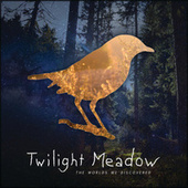 The Worlds We Discovered by Twilight Meadow