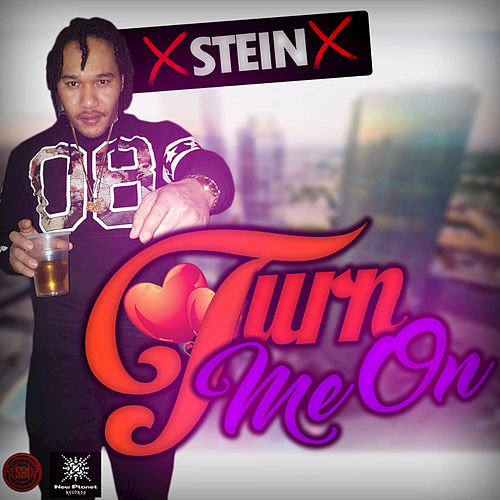 Play & Download Turn Me On by Stein | Napster