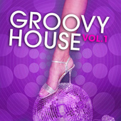 Play & Download Groovy House, Vol. 1 by Various Artists | Napster