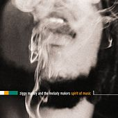 Play & Download The Spirit Of Music by Ziggy Marley | Napster