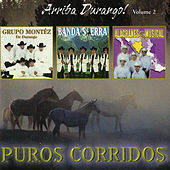 Arriba Durango, Vol. 2 by Various Artists
