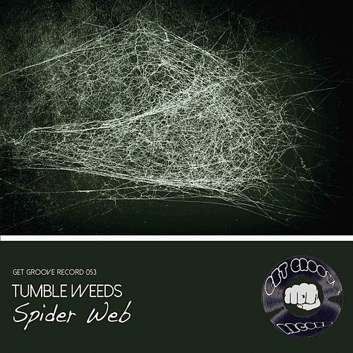 Spider Web by Tumbleweeds