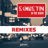 Play & Download In the Night (Remixes) by Schustin | Napster