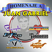 Play & Download Homenaje A Juan Gabriel by Various Artists | Napster