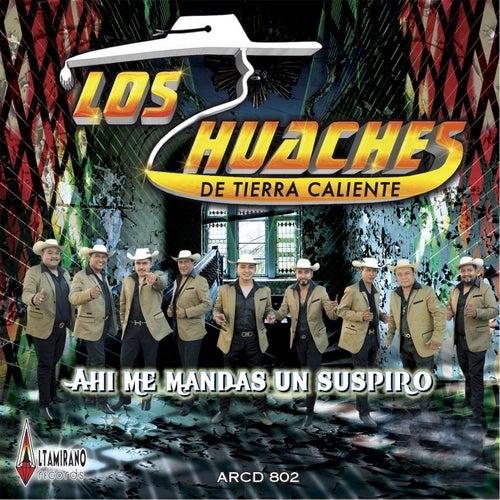 Play & Download Ahi Me Mandas Un Suspiro by Los Huaches De Tierra Caliente   Napster