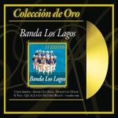 Play & Download Coleccion De Oro: 15 Exitos by Banda Los Lagos | Napster