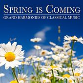 Spring is Coming by Various Artists