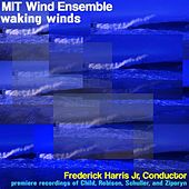 Play & Download Waking Winds by MIT Wind Ensemble | Napster