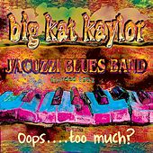 Bo Diddley School by Big Kat Kaylor