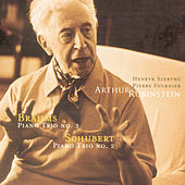Rubinstein Collection, Vol. 73: Brahms Piano Trio No. 3; Schubert Piano Trio No. 2 by Arthur Rubinstein