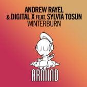 Play & Download Winterburn by Andrew Rayel & Digital X | Napster