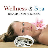 Wellness & Spa: Relaxing New Age Music with Piano Melodies and Nature Sounds by Various Artists
