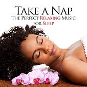 Play & Download Take a Nap - The Perfect Relaxing Music for Sleep Deprived Subjects to Help them Find Peace and Harmony for their Inner Balance by Various Artists | Napster