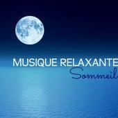 Musique Relaxante – Sommeil et Relaxation, Zen et Yoga de Bien Dormir