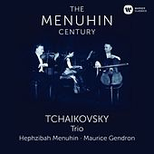 Play & Download Tchaikovsky: Piano Trio by Yehudi Menuhin | Napster