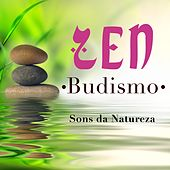 Play & Download Zen Budismo  - Sons da Natureza by Various Artists | Napster