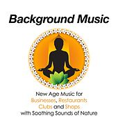 Play & Download Background Music - The Best Relaxing New Age Music for Businesses, Restaurants, Clubs and Shops with Soothing Sounds of Nature by Various Artists | Napster