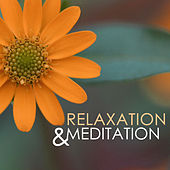 Meditation & Relaxation - Healing Atmosphere for Achieving Mindfulness, Deep Sleep Relaxing Songs to Meditate by Various Artists