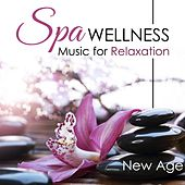 Spa Wellness: Hang Drum Relaxation Music, Music for Massage, Meditation, Relaxation, Sleep, Tai Chi and Lullabies to Help You Relax, Meditate and Heal with Nature Sounds and Natural White Noise by Various Artists