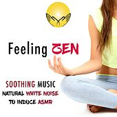 Feeling Zen - Natural White Noise and Soothing Music to Help You Sleep and Relax with Nature Sounds to help Induce ASMR by Various Artists