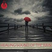 Healing Sound of the Rain by Mick Douglas