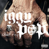 Skull Ring by Iggy Pop