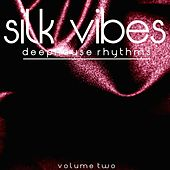 Silk Vibes, Vol. 2 by Various Artists