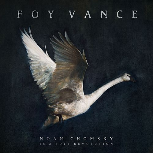 Noam Chomsky Is A Soft Revolution by Foy Vance