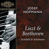 Play & Download Liszt, Beethoven, Scarlatti & Schumann: Works for Piano by Josef Hofmann | Napster