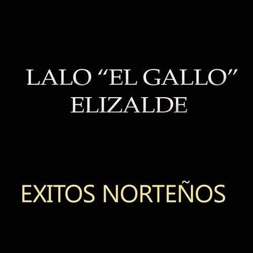 Play & Download Exitos Nortenos by Lalo El Gallo Elizalde | Napster