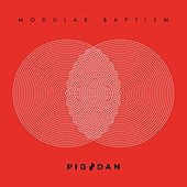 Modular Baptism by Pig and Dan