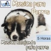 Música para Perros - 5 Horas Música Relajante Para Perros by Relaxmydog