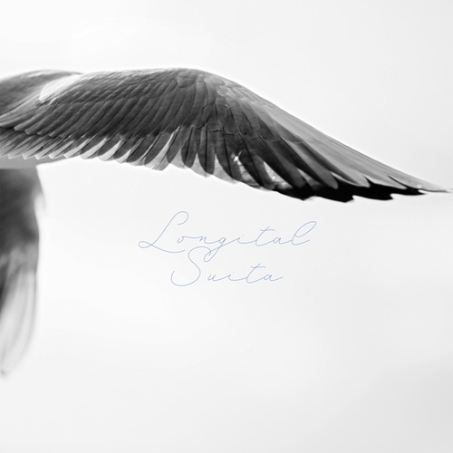 Longital Suita by Longital