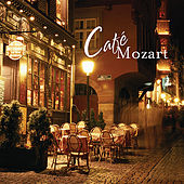 Play & Download Cafe Mozart by Mozart Modern | Napster