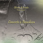 Play & Download Concerto À Brasileira by Various Artists | Napster