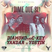 Play & Download Dime Que Si (Remix) [feat. Yandar & Yostin] by Diamond | Napster