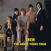 The Angry Young Them! by Them