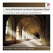 Konrad Ruhland Conducts Gregorian Chant by Various Artists