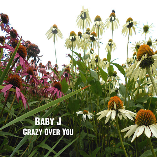 Play & Download Crazy Over You by Baby J | Napster