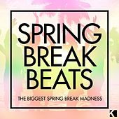 Spring Break Beats (The Biggest Spring Break Madness) von Various Artists