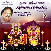 Play & Download Andathiladanga Annamalaiye by S.P.Balasubramaniam | Napster