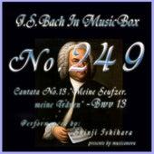 Cantata No. 13, Meine Seufzer, Meine Tranen, BWV13 by Shinji Ishihara