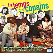 Le temps des copains by Various Artists