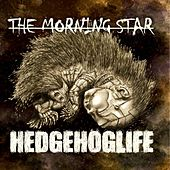 Play & Download Hedgehoglife by Morning Star | Napster