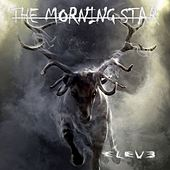 Eleve by Morning Star