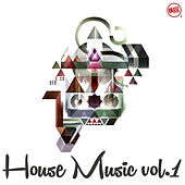 House Music, Vol. 1 by Various Artists