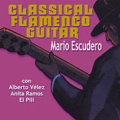Classical Flamenco Guitar by Various Artists